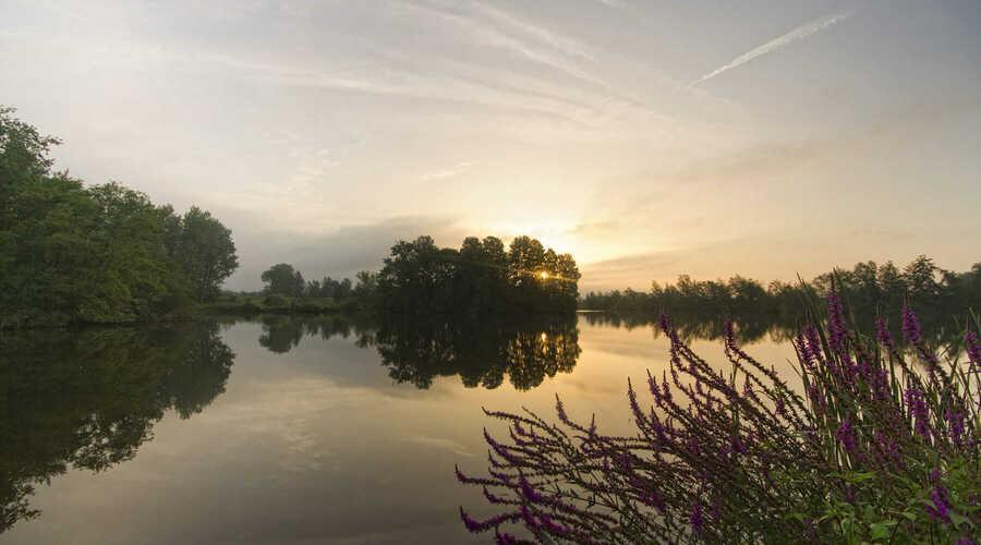 Wordt Rivierpark Scheldevallei een Nationaal Park?